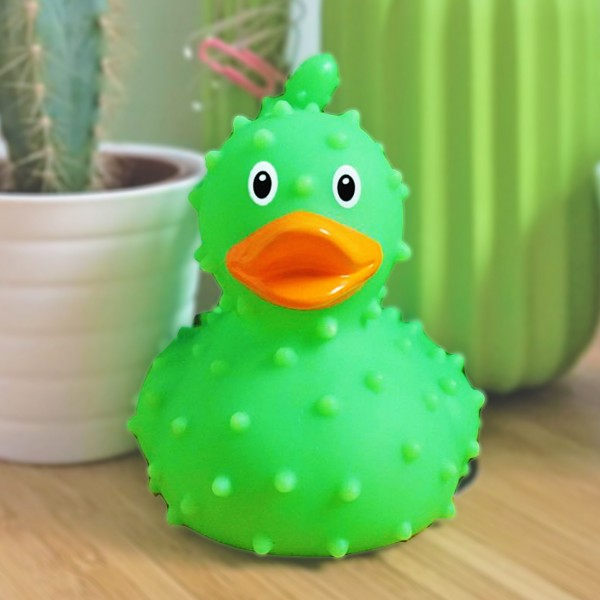 LILALU rubber duck cactus next to a cactus