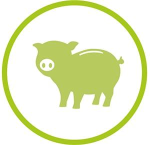 Sparschwein BIGGYS Pflegehinweis LILALU