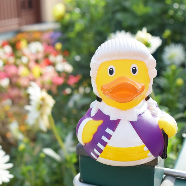 LILALU rubber duck baron in the garden
