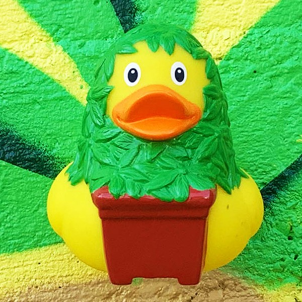 LILALU rubber duck Cannabis in front of a grafitti